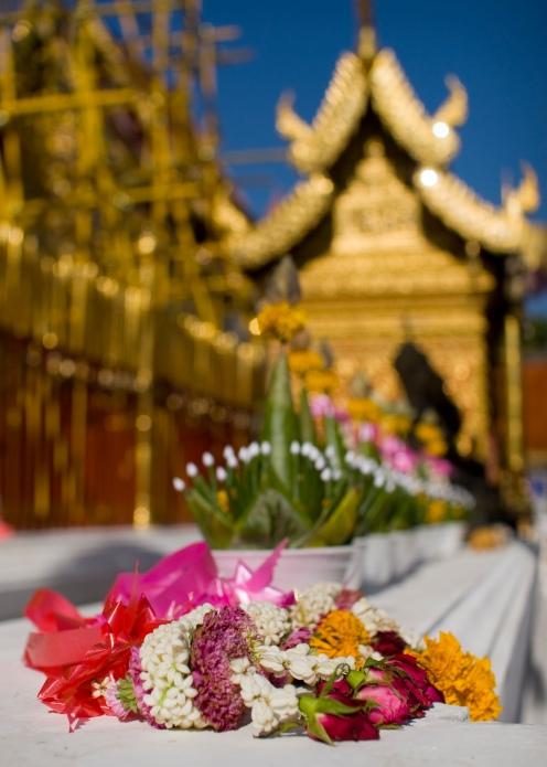 Flowers at Wat Phra That Doi Suthep