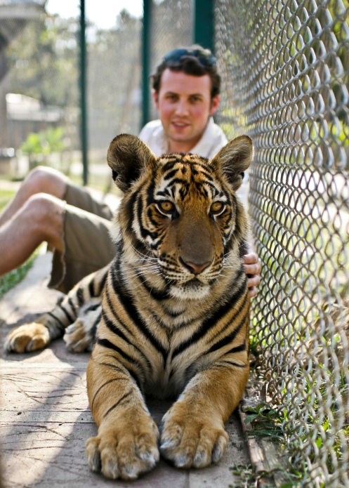 Getting in a cage with a tiger...nice!