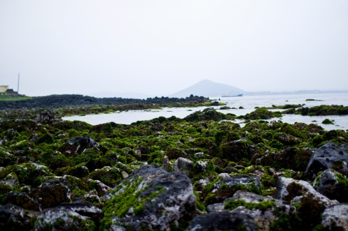 Volcanic rocks, view of a volcano on Jeju-do from U-do