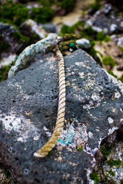 Old anchor, sea colors