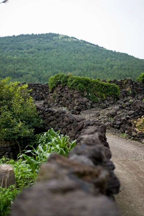 I loved the volcanic rock walls