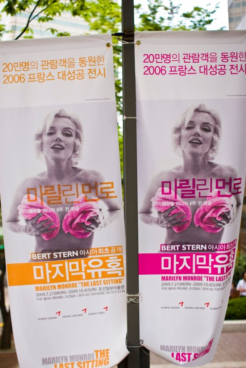 Marilyn Monroe: The Last Sitting