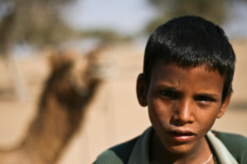 Camel Boy. Bikaner.