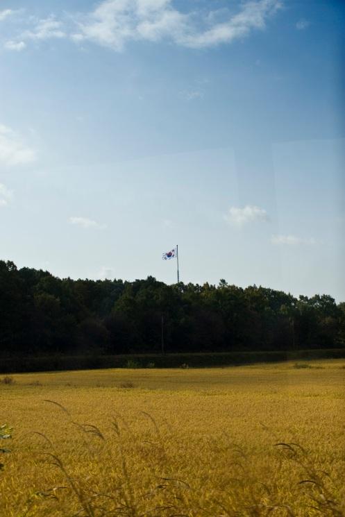 Expensive rice fields, Korean flag.